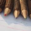 twig-pencils-nz